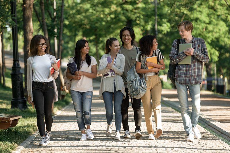 cara daftar program kampus merdeka magang studi independen